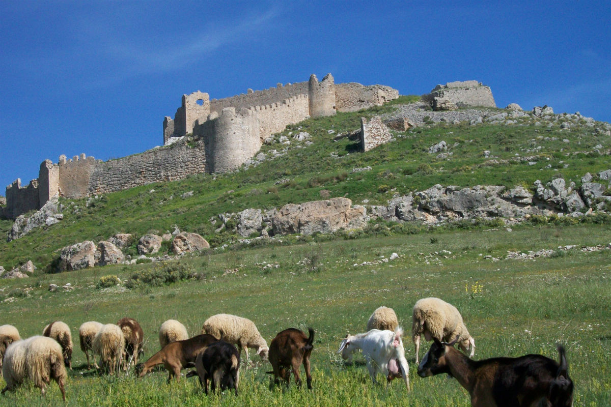 Citadelle de Larissa à Argos, Péloponnèse. Les remparts présentent plusieurs niveaux superposés : antique, byzantin, franc et turc.