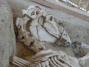 Tombe de Mikri Doxipara. 1er siècle ap. J.-C. Thrace