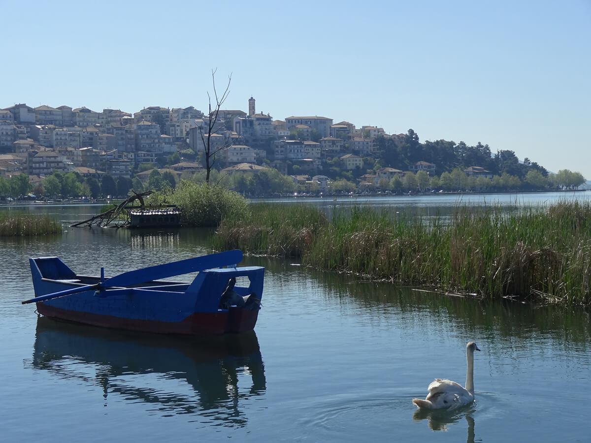Vue de Kastoria, près de la frontière albanaise. Troisième capitale mondiale de la fourrure, construite sur une presqu'île du lac Orestiades, elle offre de nombreuses églises et de belles maisons balkaniques à encorbellement